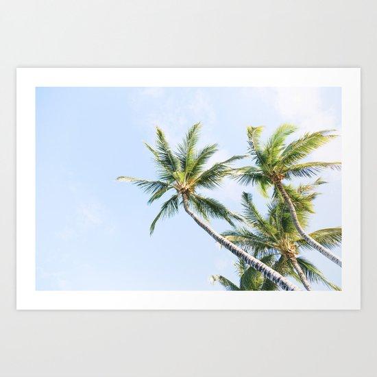 Palm trees Art Print