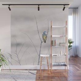 """Cassin's Kingbird 2"" by Murray Bolesta Wall Mural"