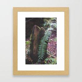 Plant and Bark Framed Art Print