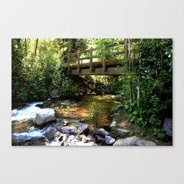 Bridge Over Fall Creek at Vallecito Canvas Print
