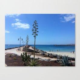 Cozy beach in Fuerteventura, Canary Islands Canvas Print