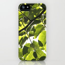 Leaves IV iPhone Case