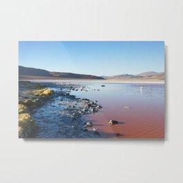 Laguna Colorada Metal Print