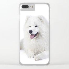 Samoyed  dog Clear iPhone Case