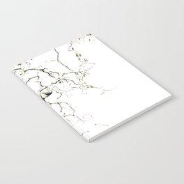 Harry Notebook