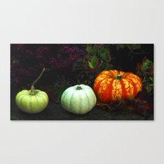 The magical pumpkins Canvas Print