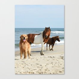 One of these things is not like the other Canvas Print