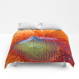 rasting place, sunny place Comforters