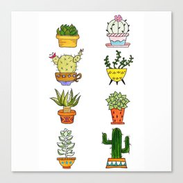 Succulents and Cacti Potted Plants Canvas Print