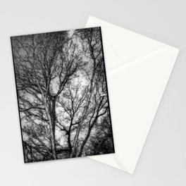 Tree Dreams Stationery Cards