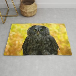 Owl Staring Contest Rug