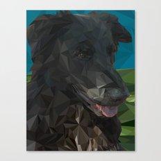 Barry Dog Canvas Print