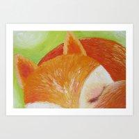 Sleep fox Art Print