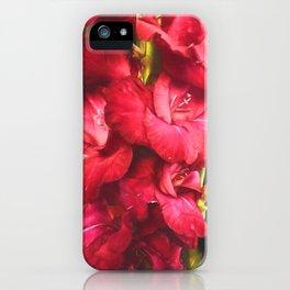 Red Gladiolas on Black iPhone Case