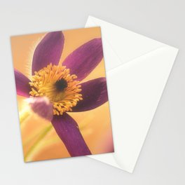 Fine Flower in Detail  Stationery Cards