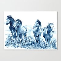 horses Canvas Prints featuring horses by Michele Petri