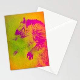 Le Raton Laveur Stationery Cards