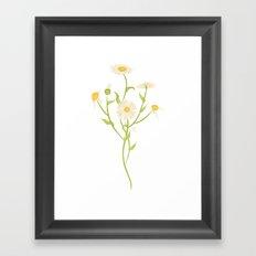 Erigeron Daisies Framed Art Print