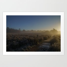 Frosty Morning At Chasewater Country Park Art Print
