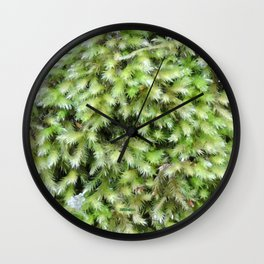 TEXTURES -- Moss on a Tree Trunk Wall Clock