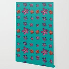 """""""Coral, pink & orange Violets over a teal background"""" Wallpaper"""