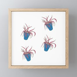 Pink Spider Plants Framed Mini Art Print