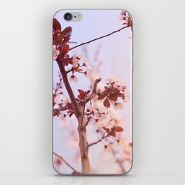 smoothness  iPhone Skin