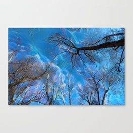 Branch on a background of the sky Canvas Print