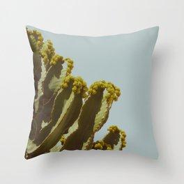 Sonora 76 Throw Pillow