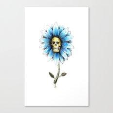 skull daisy Canvas Print