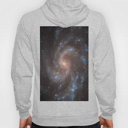 Spiral Galaxy in the Constellation Virgo Hoody