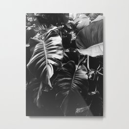Natural Background 58 Metal Print