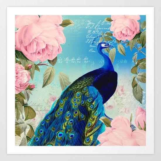 Peacock & Pink Roses  Art Print