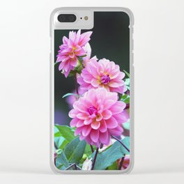 Longwood Gardens Autumn Series 124 Clear iPhone Case