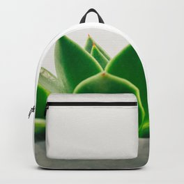 Simple Succulent Backpack