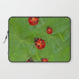 RED LADY BUGS ON GREEN LEAVES DESIGN ART Laptop Sleeve