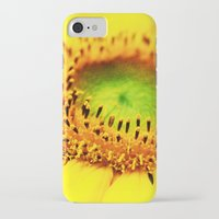 sunflower iPhone & iPod Cases featuring Sunflower by Falko Follert Art-FF77