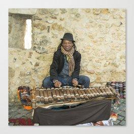 Mr Xylophone  Canvas Print