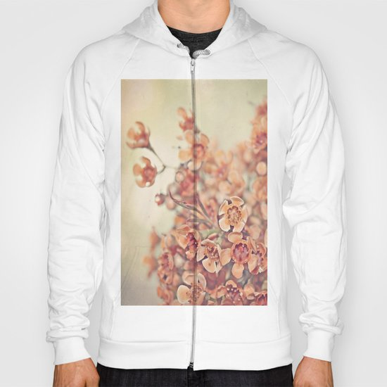 Orange Waxflowers Hoody