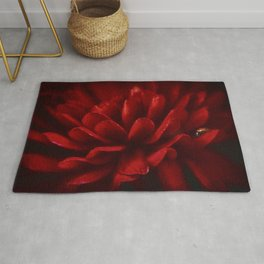 Red on Red Rug