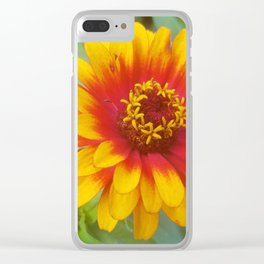 Zinnia on fire Clear iPhone Case