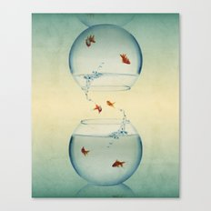 Goldfish Infinity Canvas Print