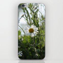 Irish daisy iPhone Skin