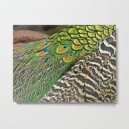Royal Colors Metal Print