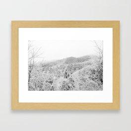 Carolina Winter Framed Art Print