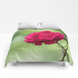 Wild red rose on green blurry background Comforters