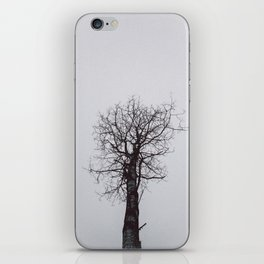 Grey Tree mood iPhone Skin