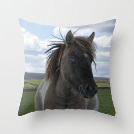 Blue Eyed Dartmoor Pony Throw Pillow
