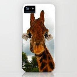 Giraffe. iPhone Case