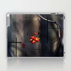 Berries And Mystical Shapes Laptop & iPad Skin